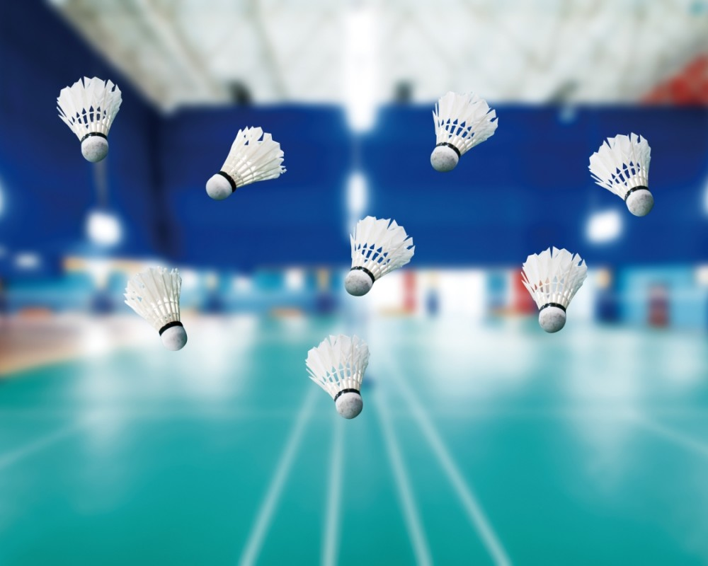 Optimized-Badminton (2)